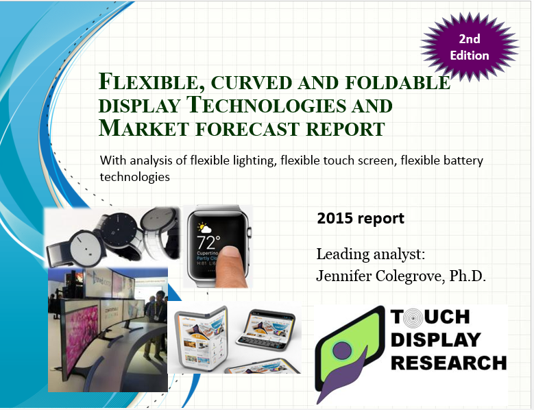 Flexible report 2nd edition cover