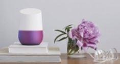 Google home flower